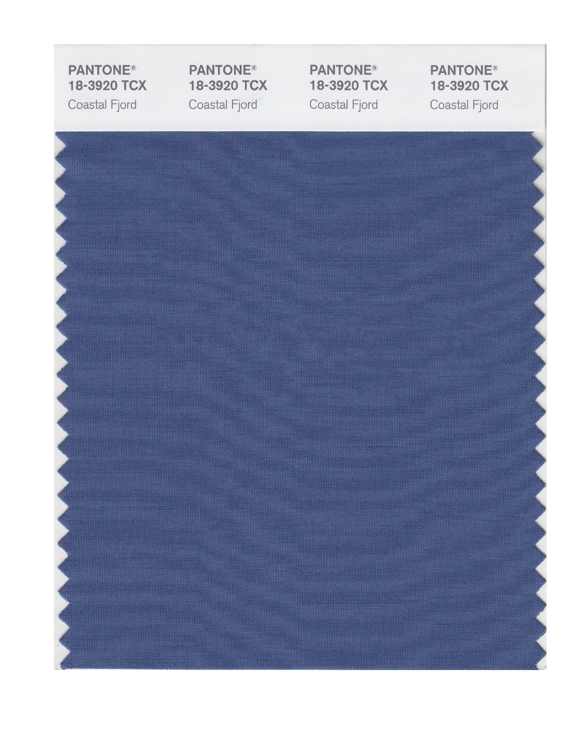 Pantone Smart Swatch 18-3920 Coastal Fjord