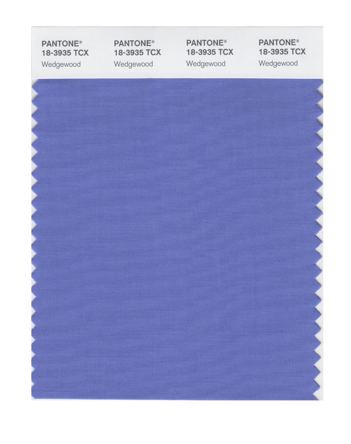 Pantone Smart Swatch 18-3935 Wedgewood