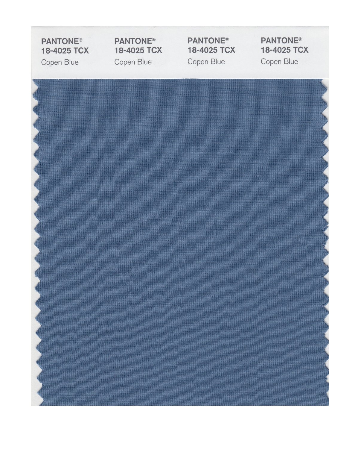 Pantone Smart Swatch 18-4025 Copen Blue