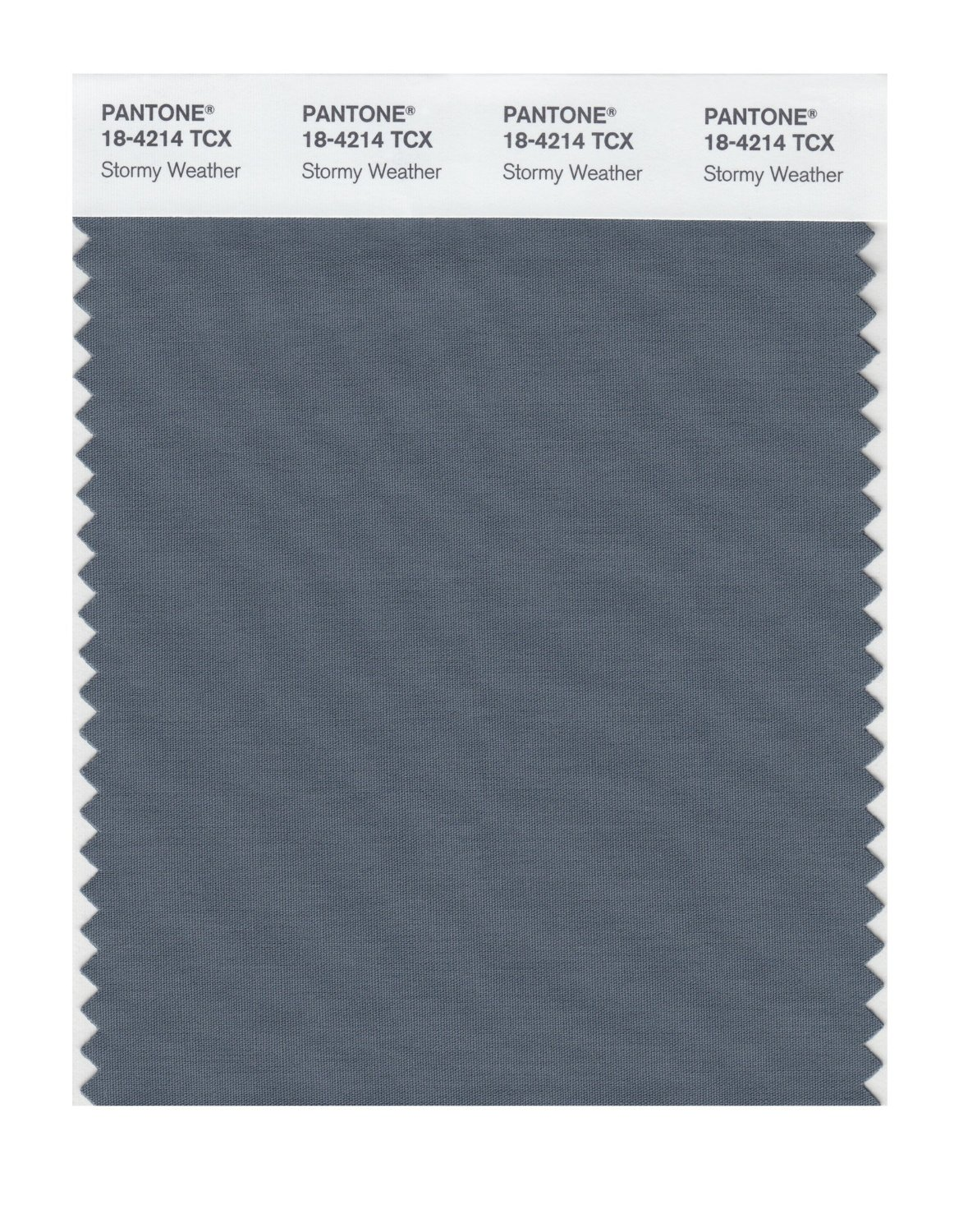 Pantone Smart Swatch 18-4214 Stormy Weather