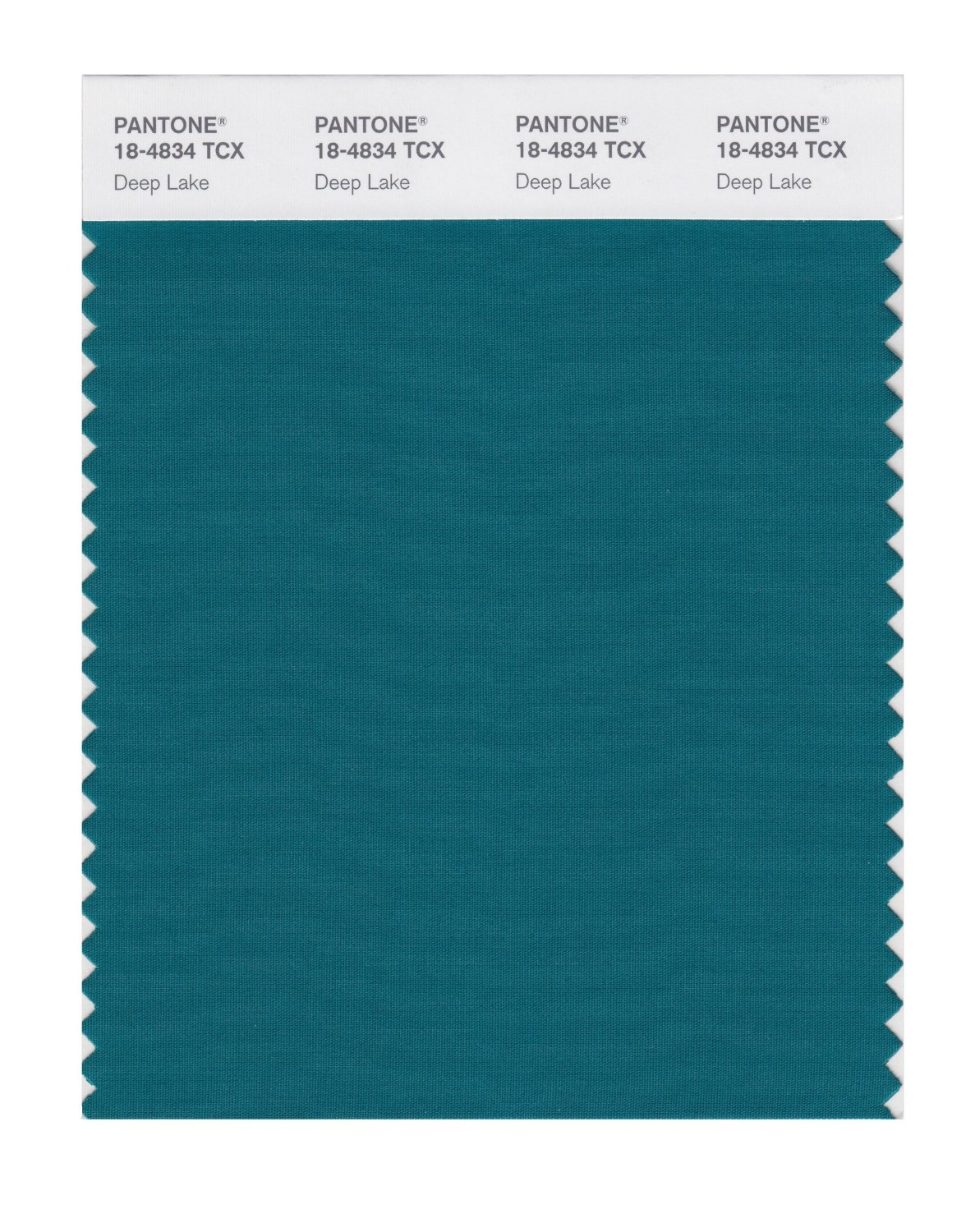 Pantone Smart Swatch 18-4834 Deep Lake