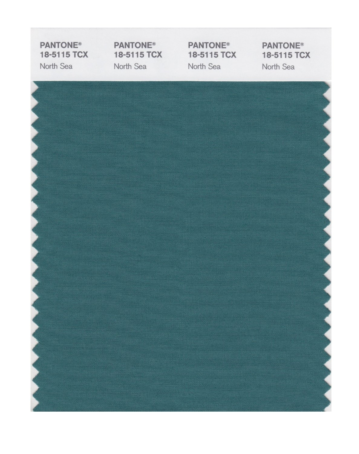 Pantone Smart Swatch 18-5115 North Sea