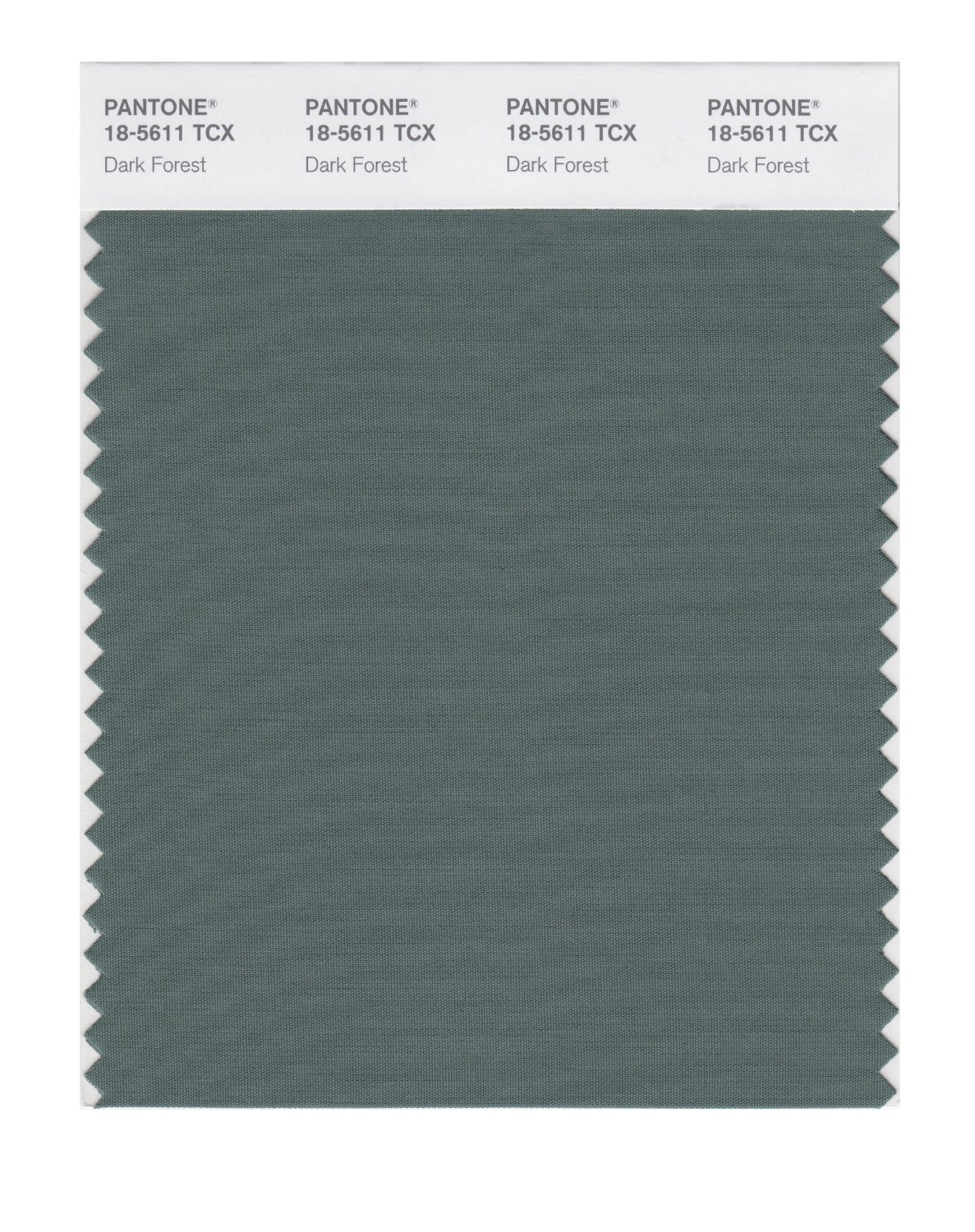 Pantone Smart Swatch 18-5611 Dark Forest
