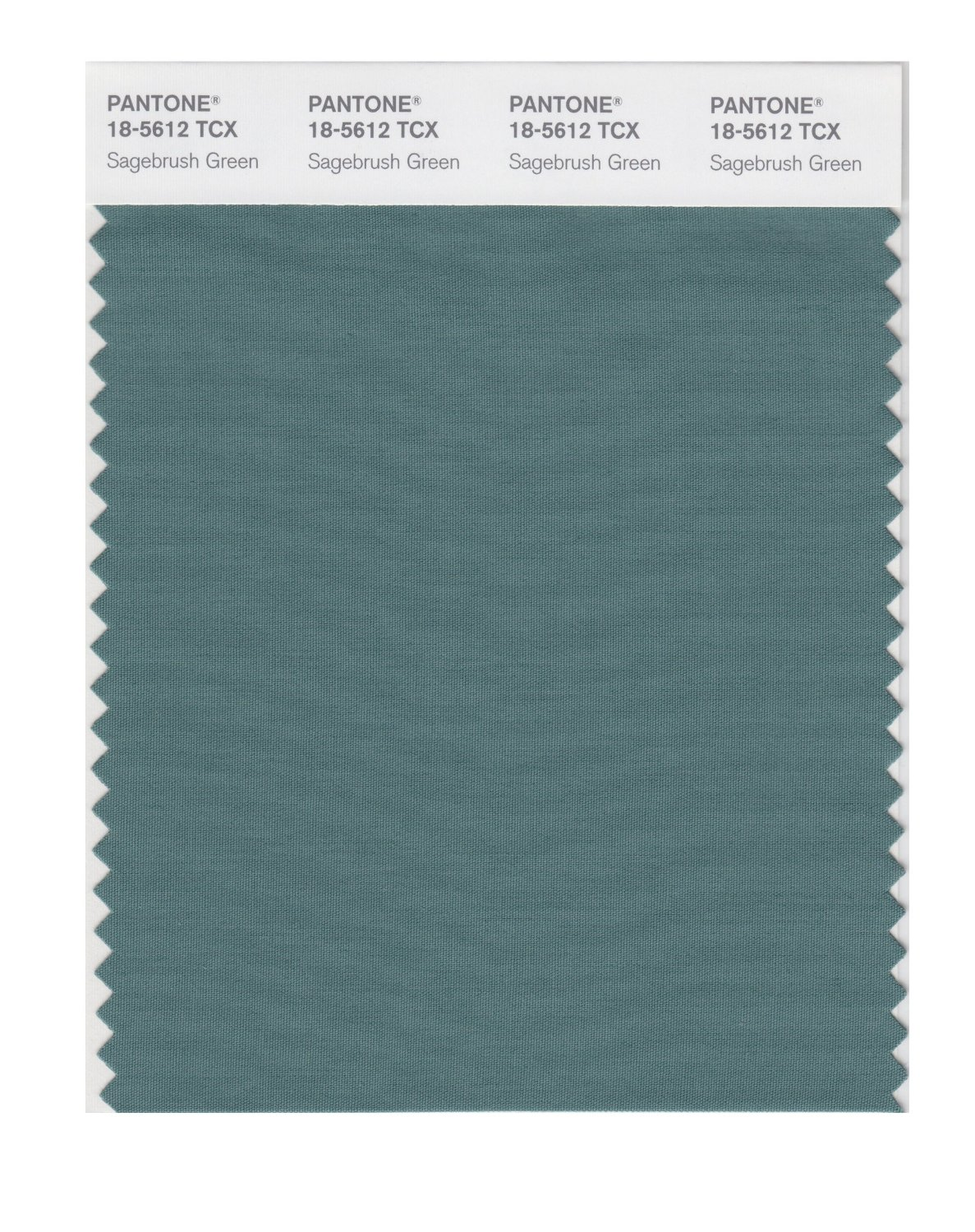 Pantone Smart Swatch 18-5612 Sagebush Green