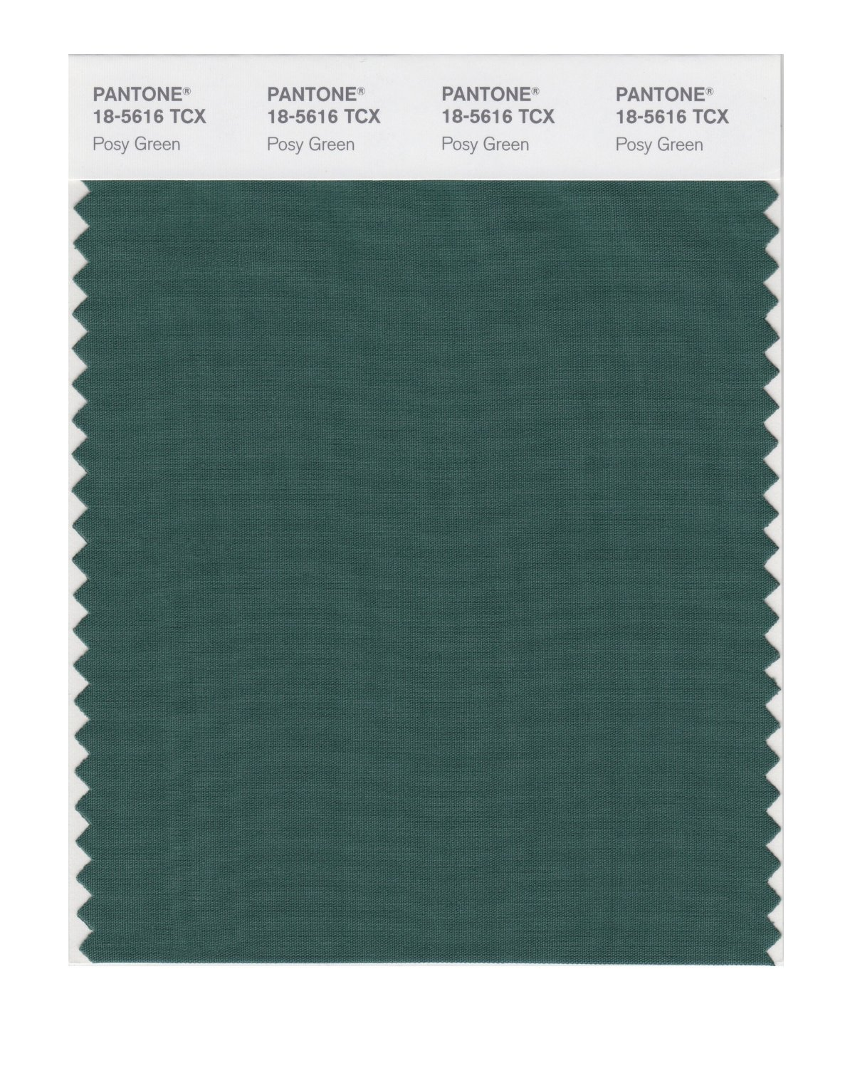 Pantone Smart Swatch 18-5616 Posy Green