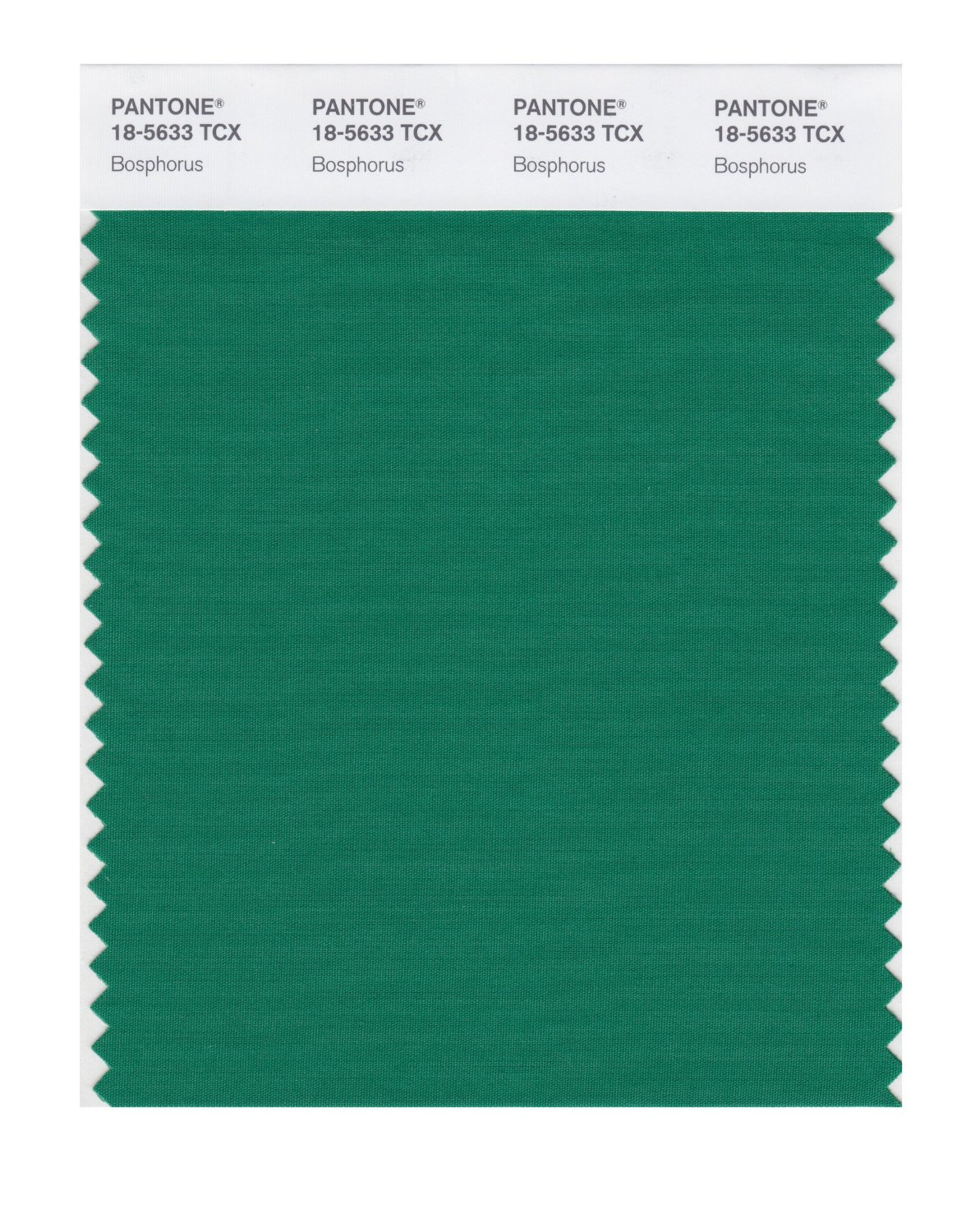 Pantone Smart Swatch 18-5633 Bosphorus