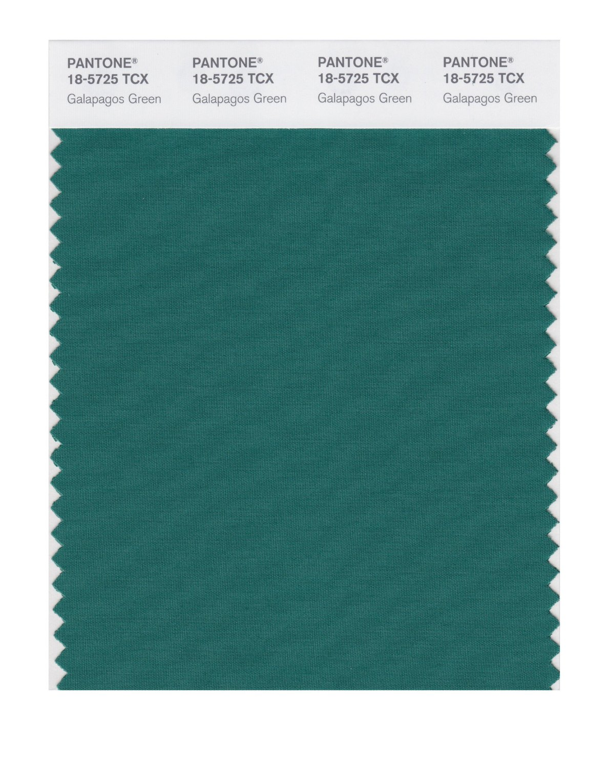Pantone Smart Swatch 18-5725 Galapagos Green