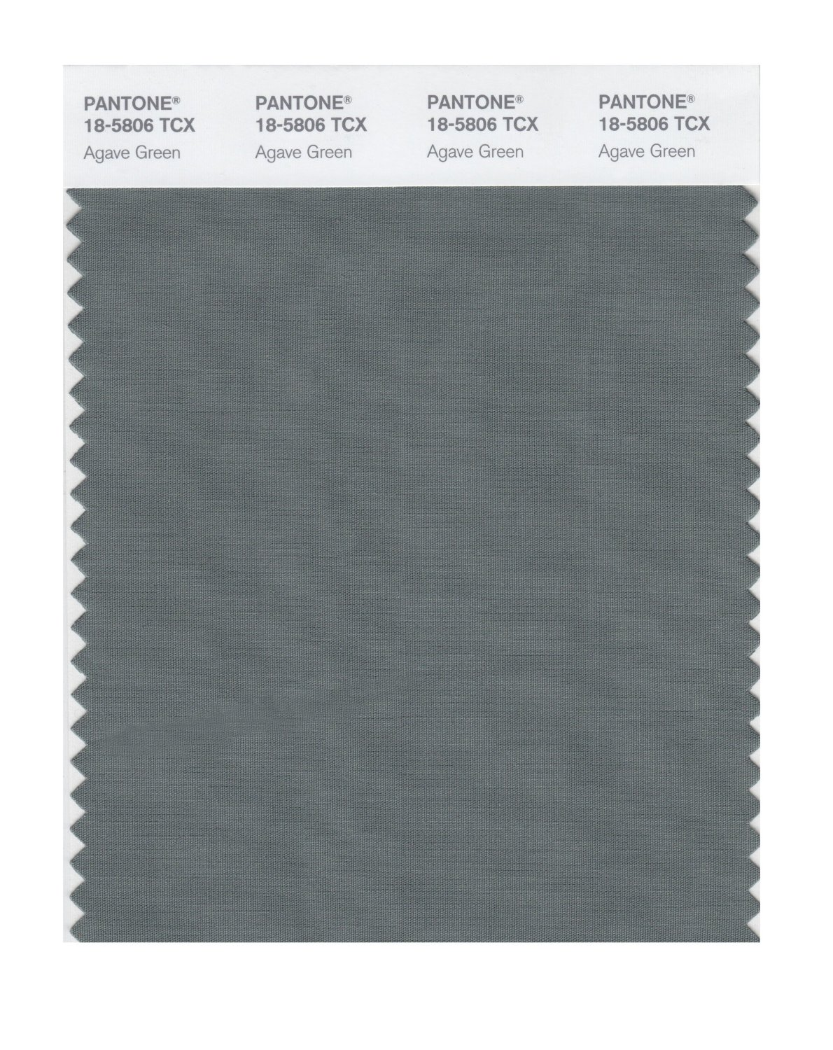 Pantone Smart Swatch 18-5806 Agave Green