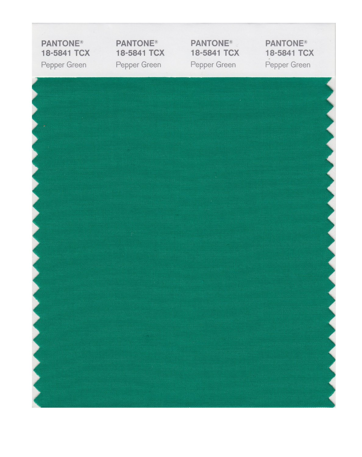 Pantone Smart Swatch 18-5841 Pepper Green