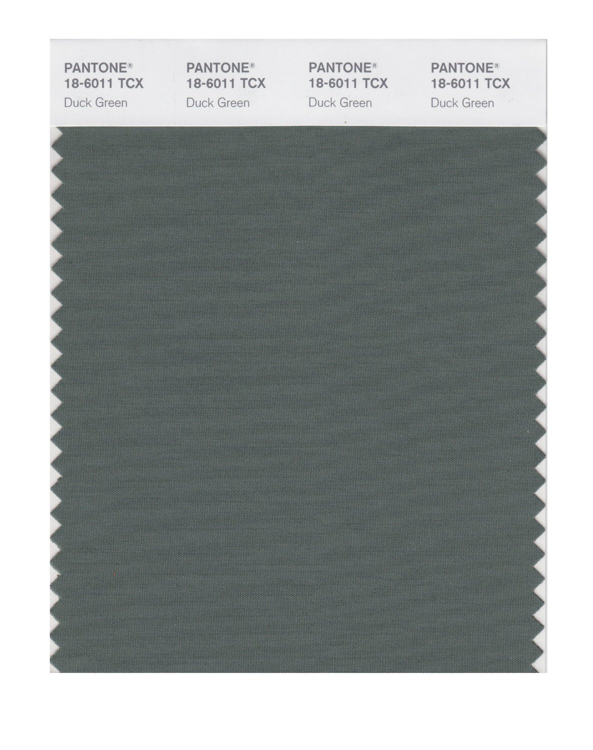 Pantone Smart Swatch 18-6011 Duck Green