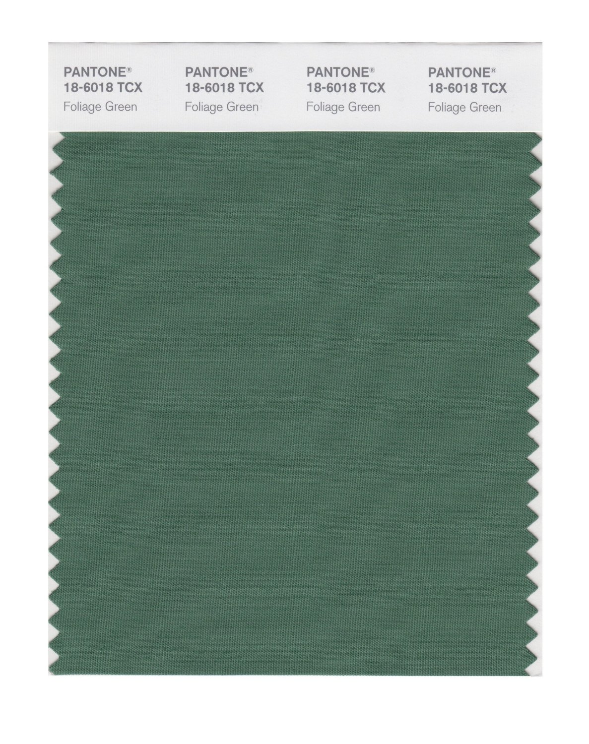 Pantone Smart Swatch 18-6018 Foliage Green