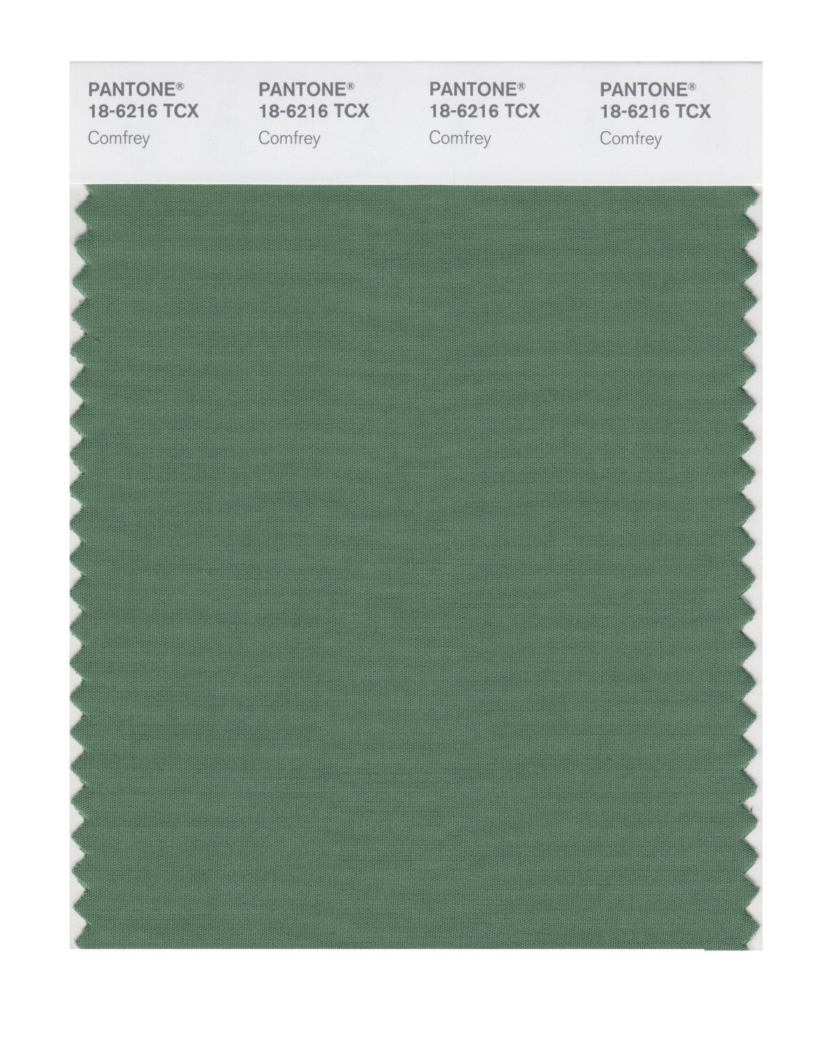 Pantone Smart Swatch 18-6216 Comfrey