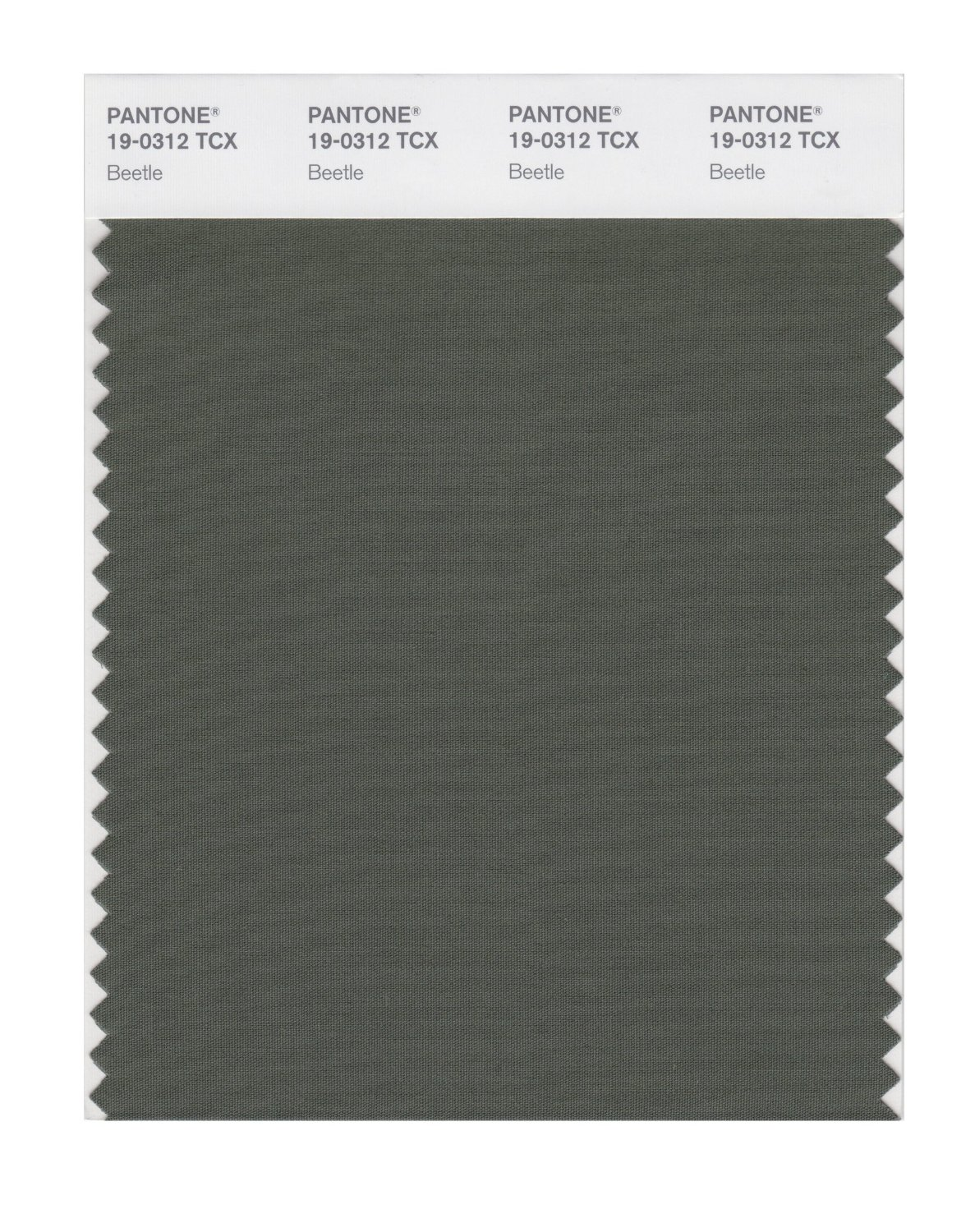 Pantone Smart Swatch 19-0312 Beetle