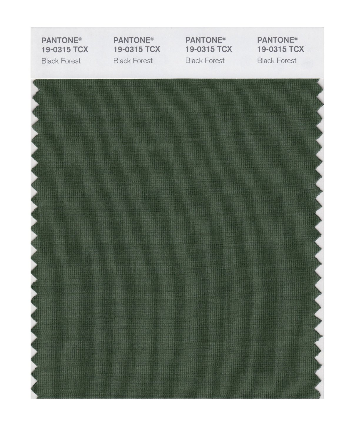 Pantone Smart Swatch 19-0315 Black Forest