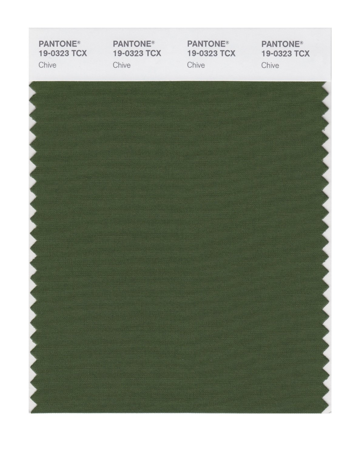 Pantone Smart Swatch 19-0323 Chive