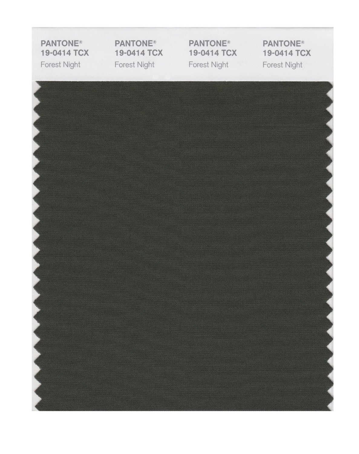 Pantone Smart Swatch 19-0414 Forest Night
