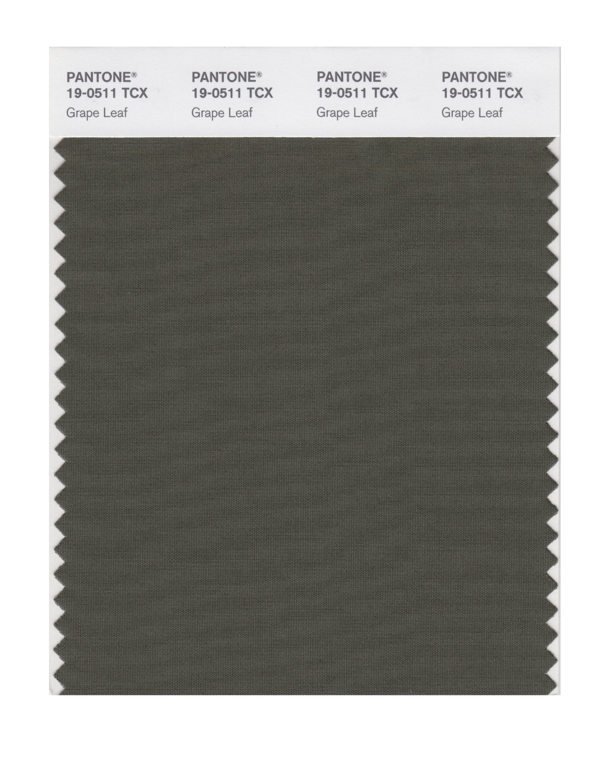 Pantone Smart Swatch 19-0511 Grape Leaf