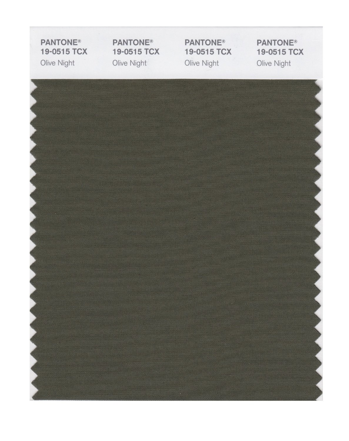 Pantone Smart Swatch 19-0515 Olive Night