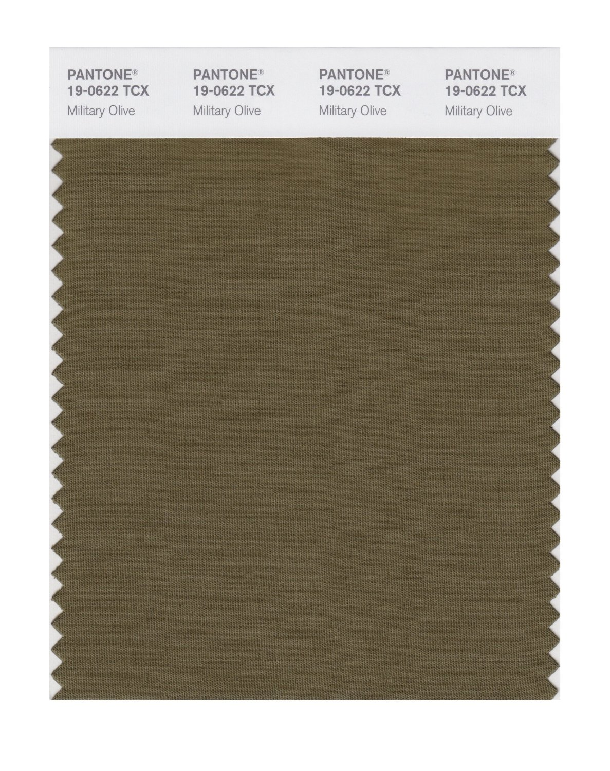 Pantone Smart Swatch 19-0622 Military Olive