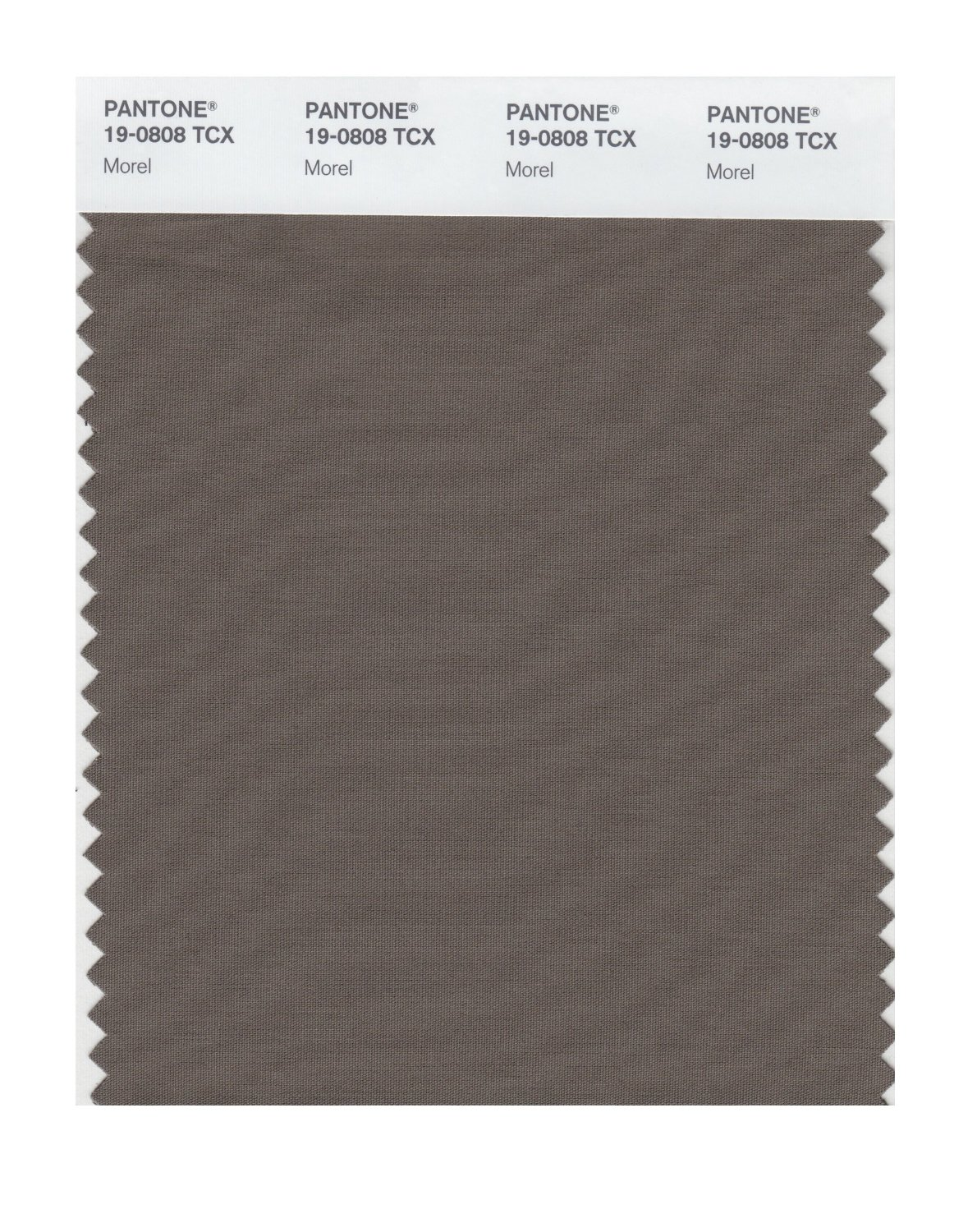 Pantone Smart Swatch 19-0808 Morel