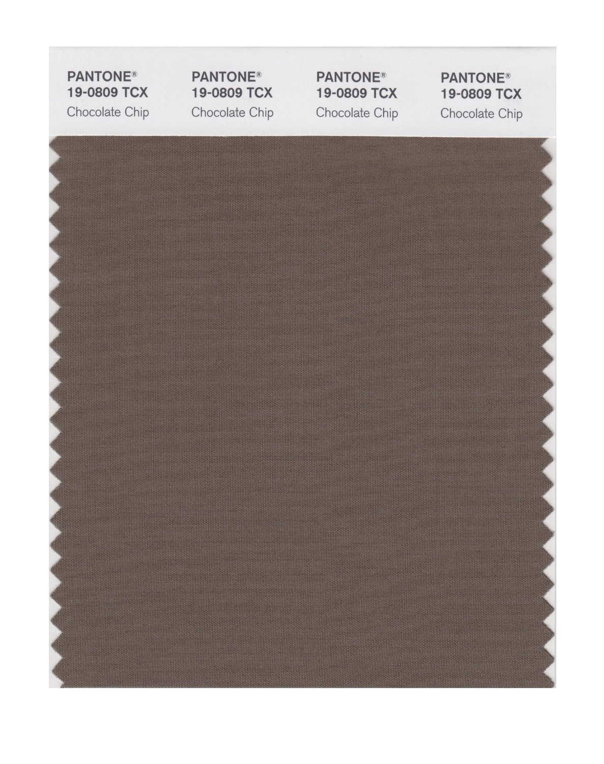 Pantone Smart Swatch 19-0809 Chocolate Chip