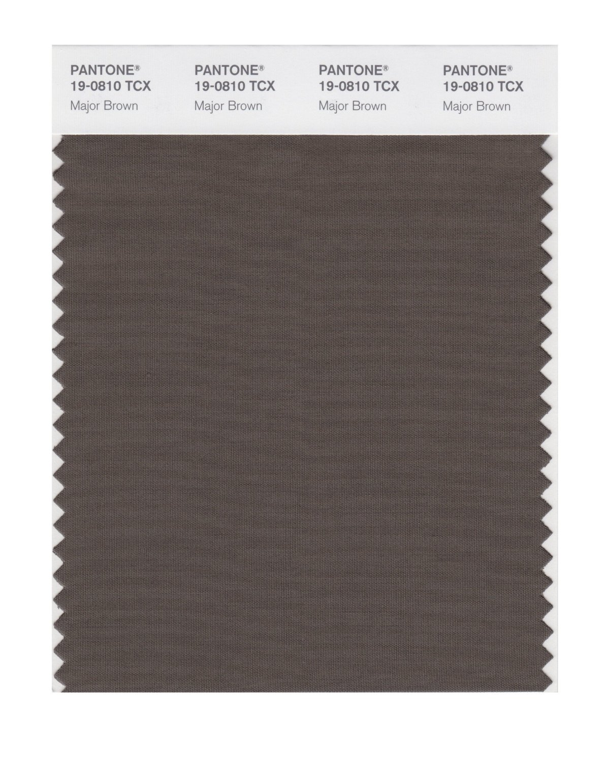 Pantone Smart Swatch 19-0810 Major Brown