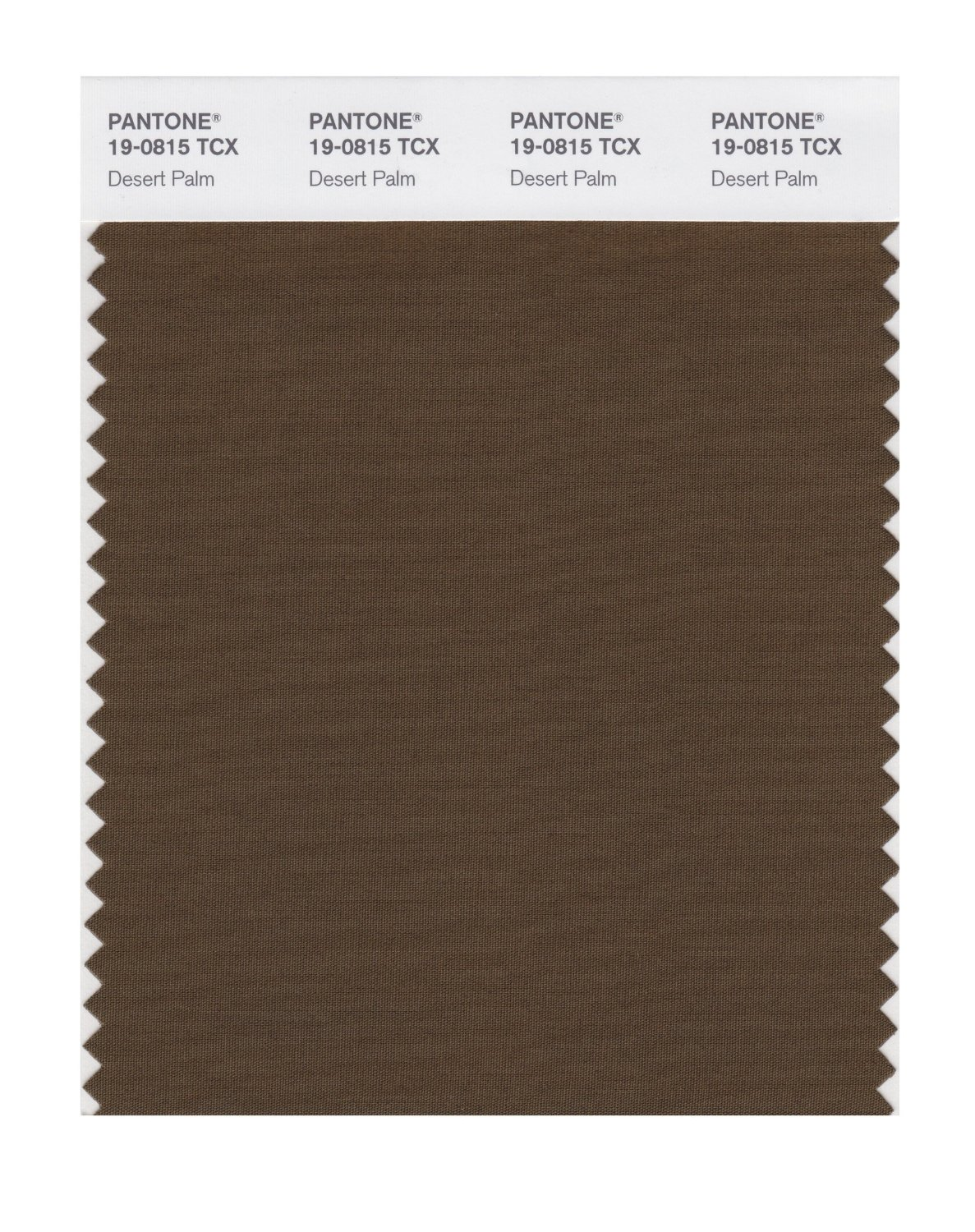 Pantone Smart Swatch 19-0815 Desert Palm