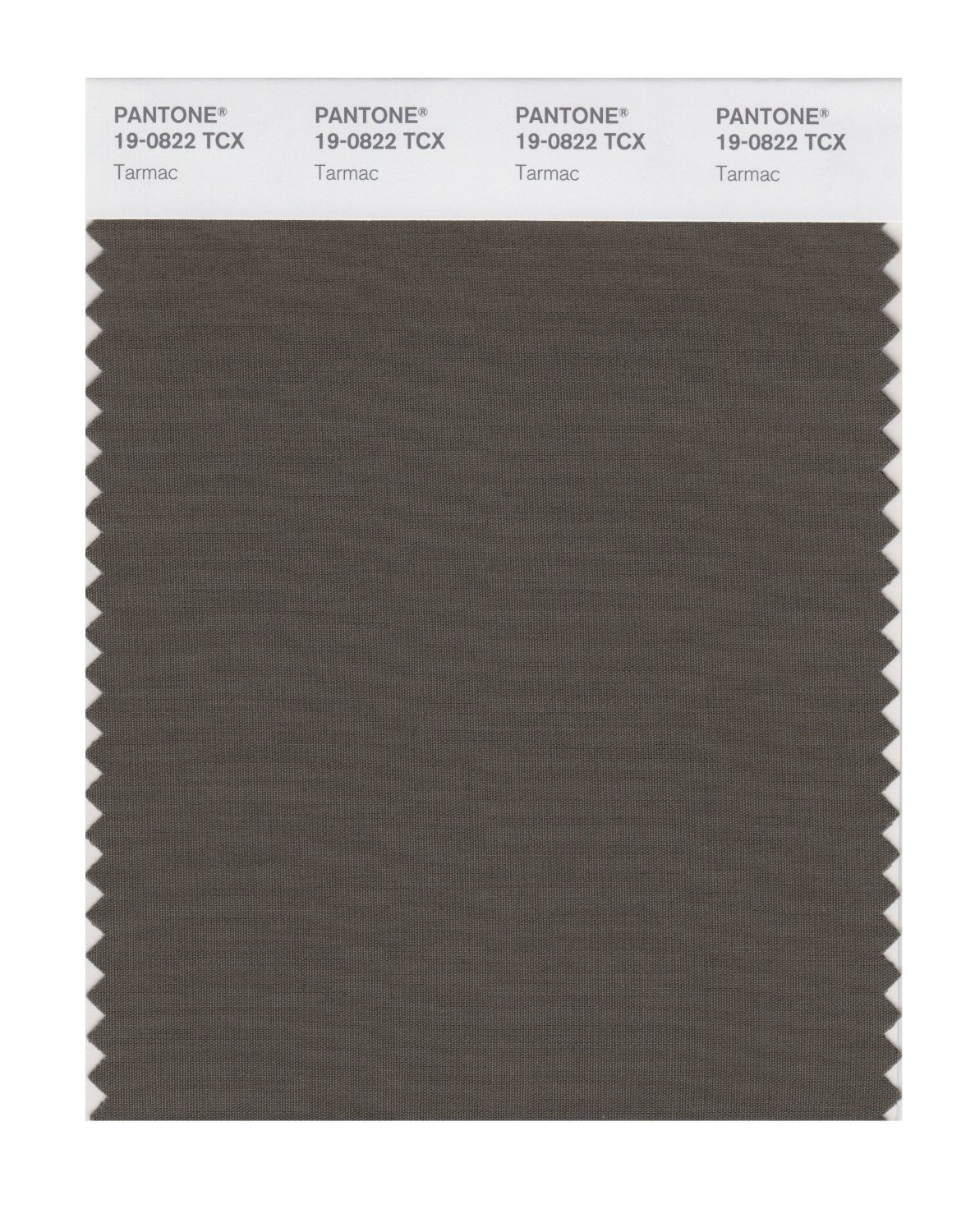 Pantone Smart Swatch 19-0822 Tarmac