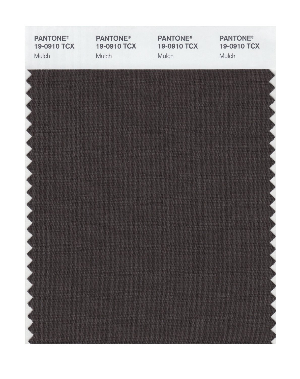 Pantone Smart Swatch 19-0910 Mulch