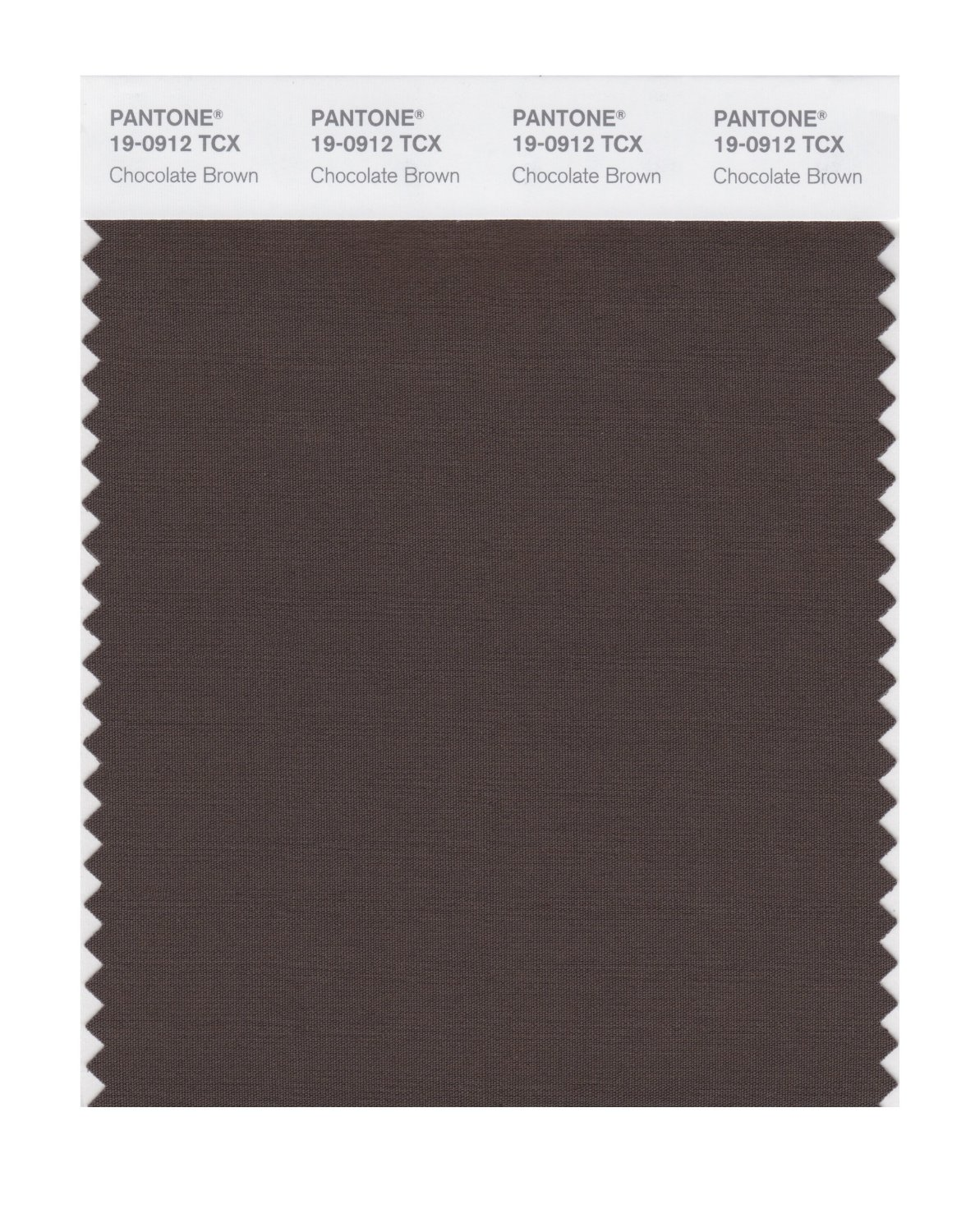 Pantone Smart Swatch 19-0912 Chocolate Brown