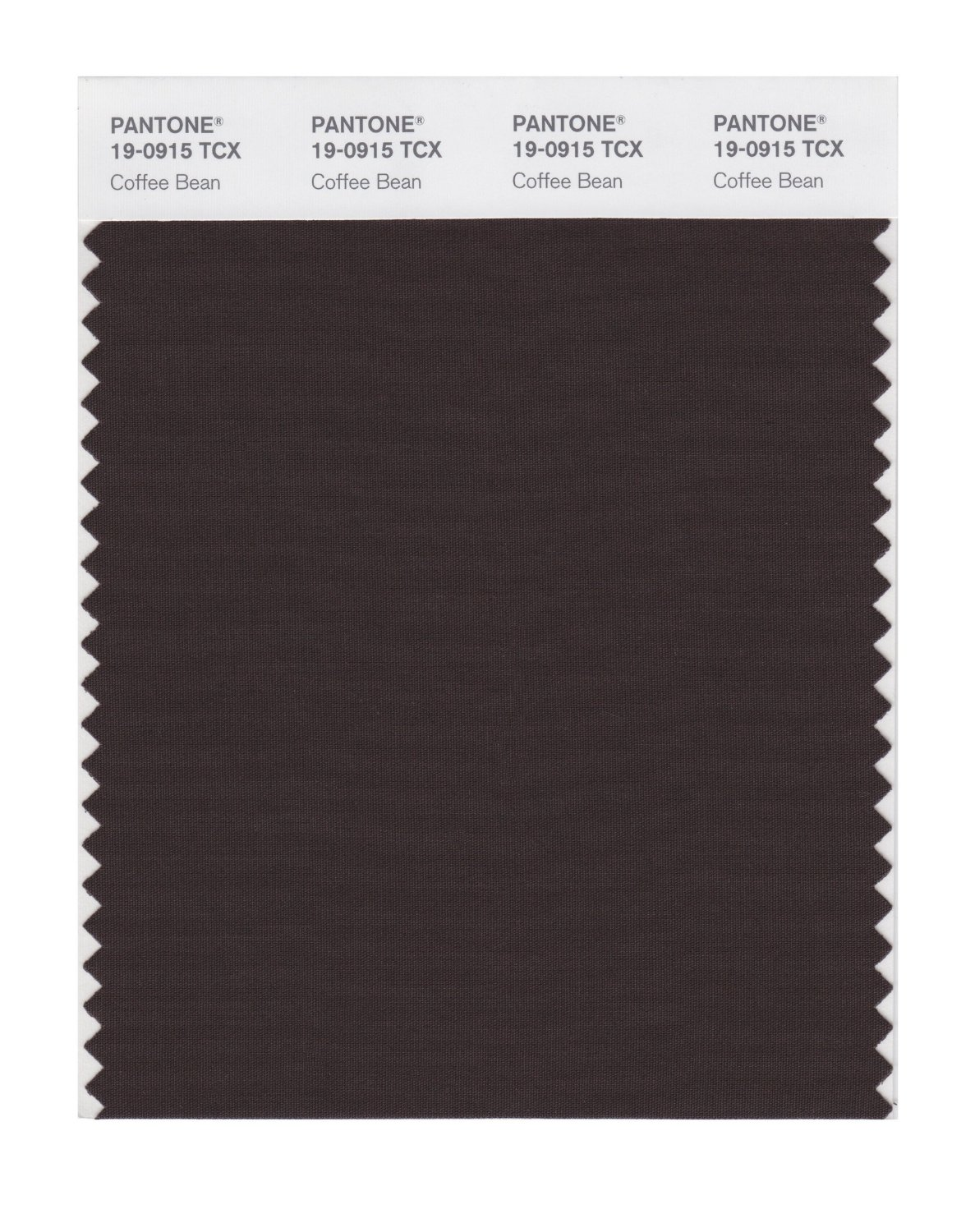 Pantone Smart Swatch 19-0915 Coffee Bean
