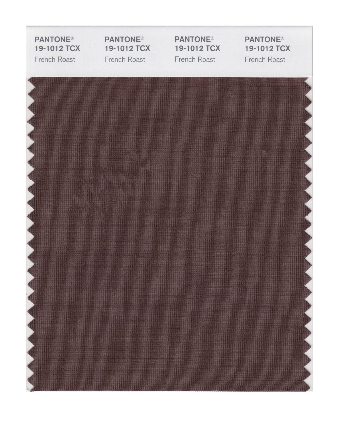 Pantone Smart Swatch 19-1012 French Roast