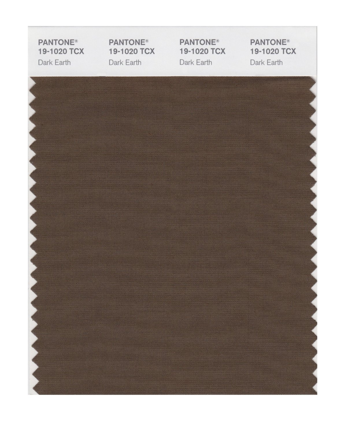 Pantone Smart Swatch 19-1020 Dark Earth