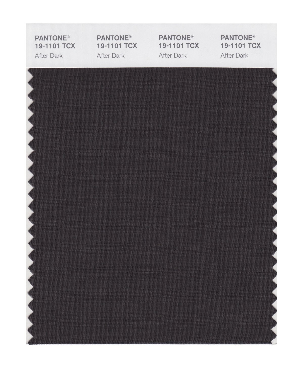 Pantone Smart Swatch 19-1101 After Dark
