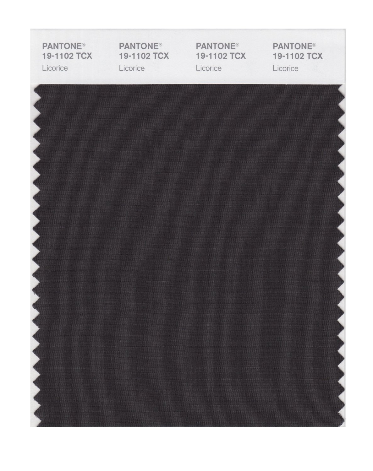 Pantone Smart Swatch 19-1102 Licorice