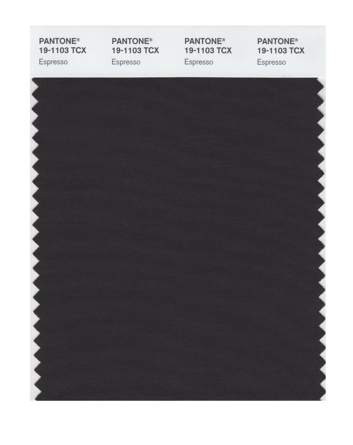 Pantone Smart Swatch 19-1103 Espresso