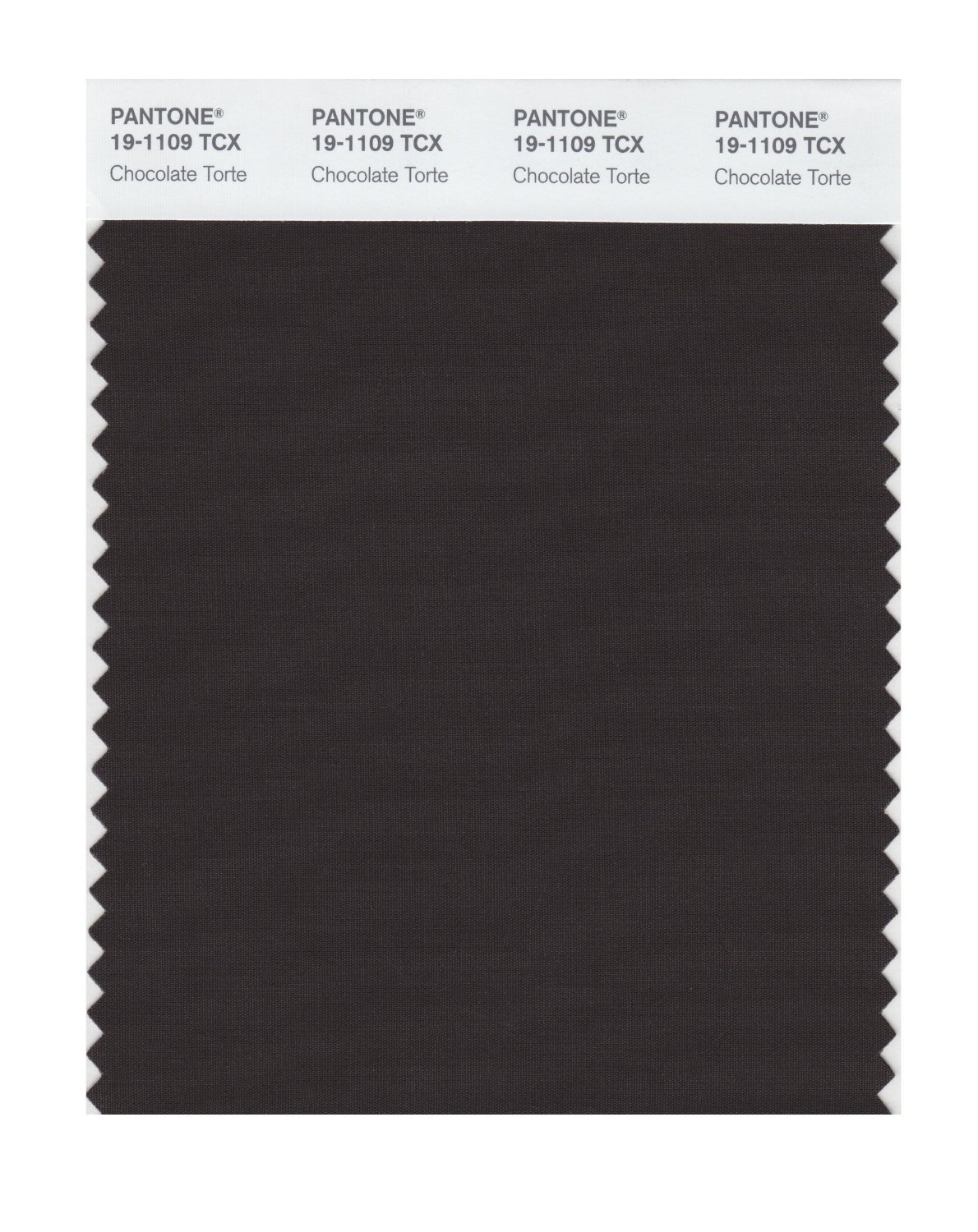 Pantone Smart Swatch 19-1109 Chocolate Torte
