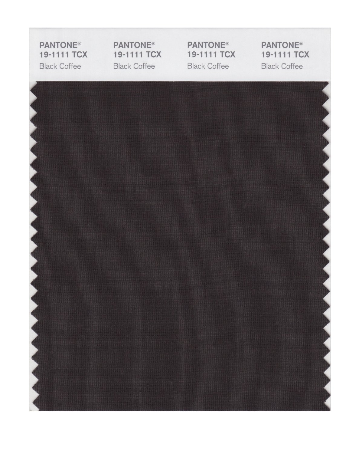 Pantone Smart Swatch 19-1111 Black Coffee