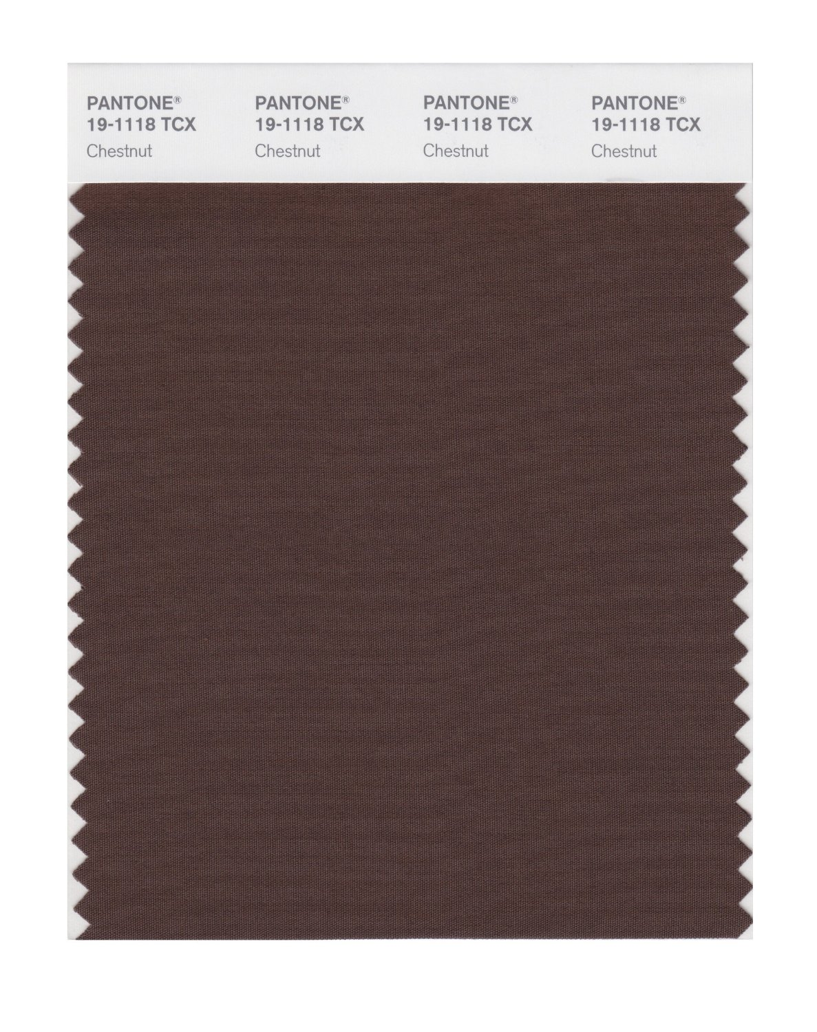 Pantone Smart Swatch 19-1118 Chestnut
