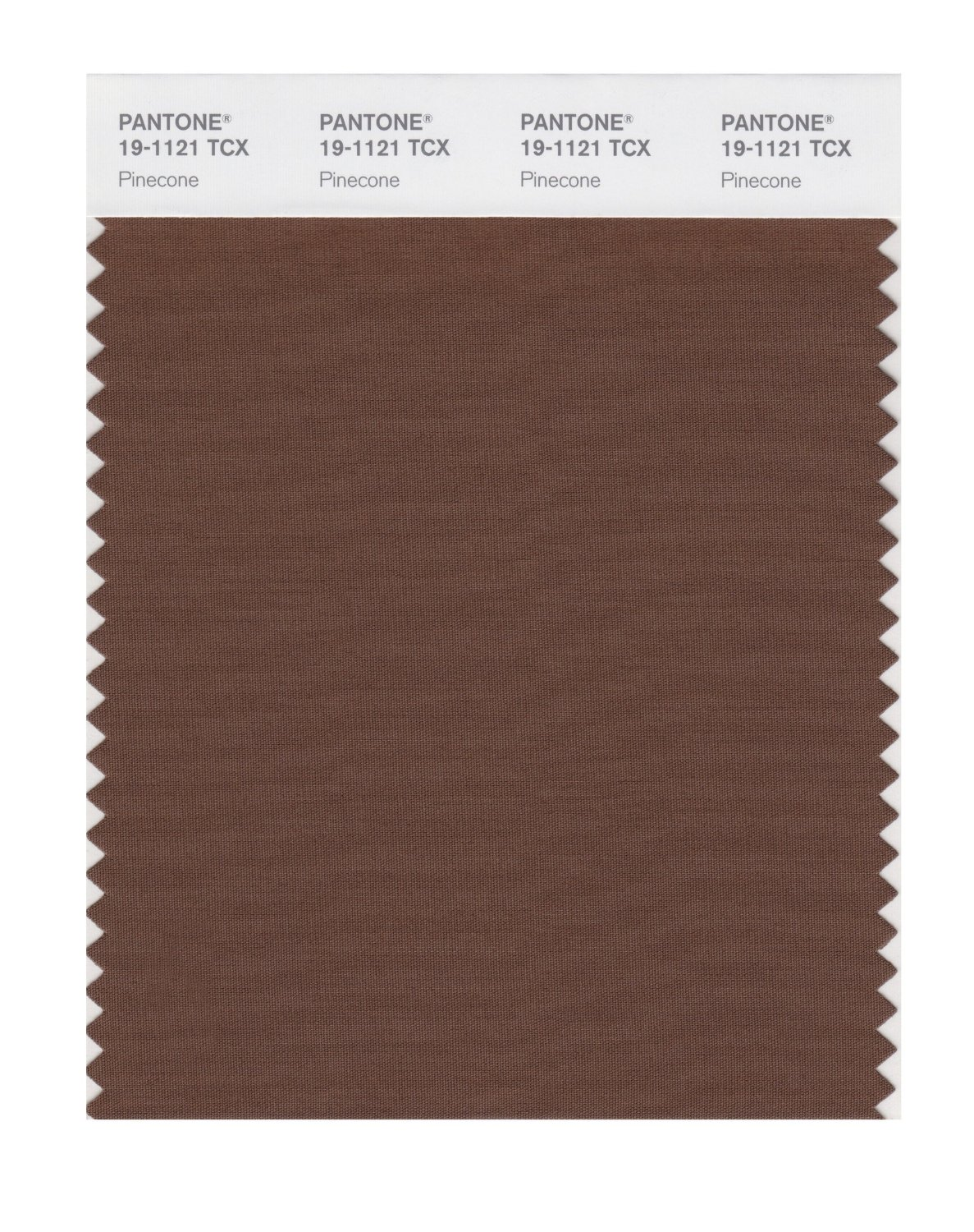 Pantone Smart Swatch 19-1121 Pinecone