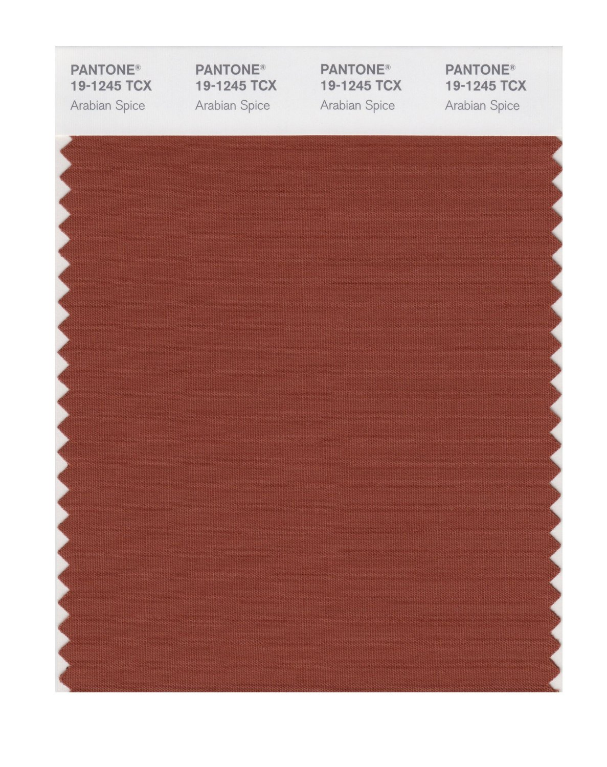 Pantone Smart Swatch 19-1245 Arabian Spice