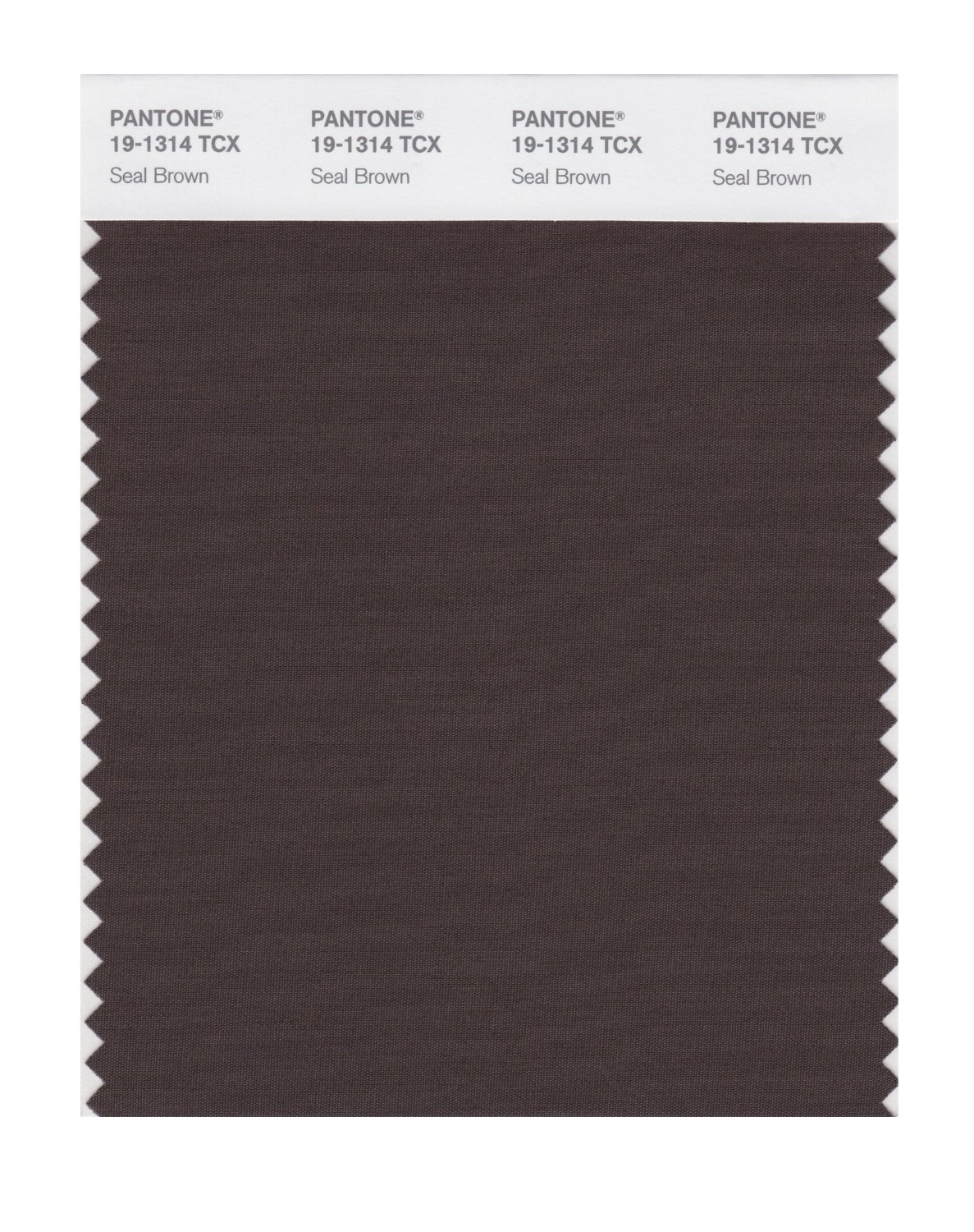 Pantone Smart Swatch 19-1314 Seal Brown
