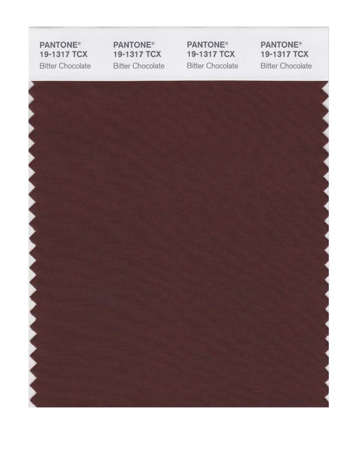 Pantone Smart Swatch 19-1317 Bitter Chocolate