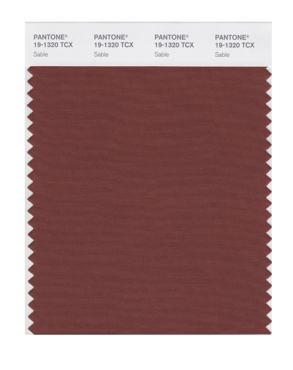 Pantone Smart Swatch 19-1320 Sable