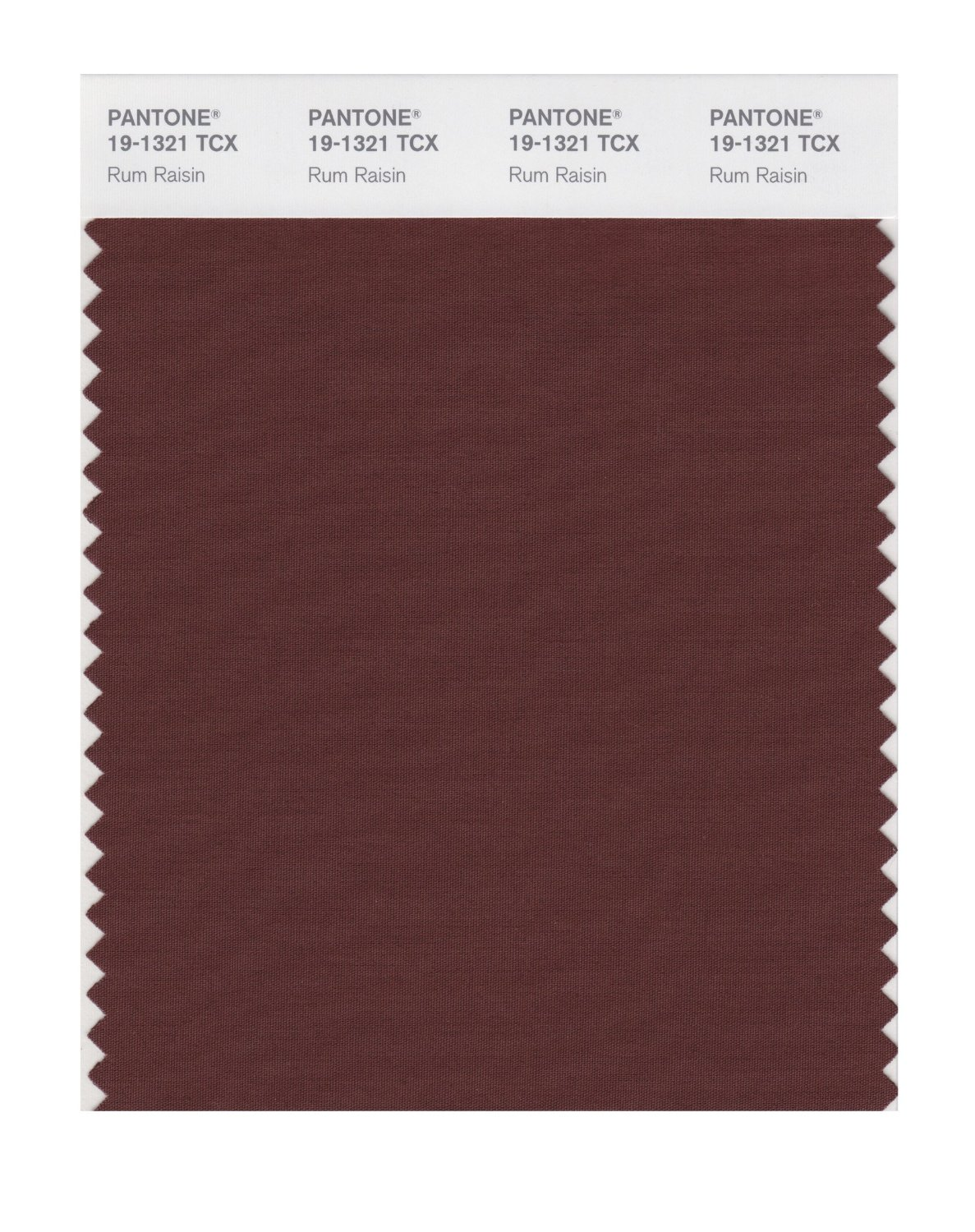 Pantone Smart Swatch 19-1321 Rum Raisin
