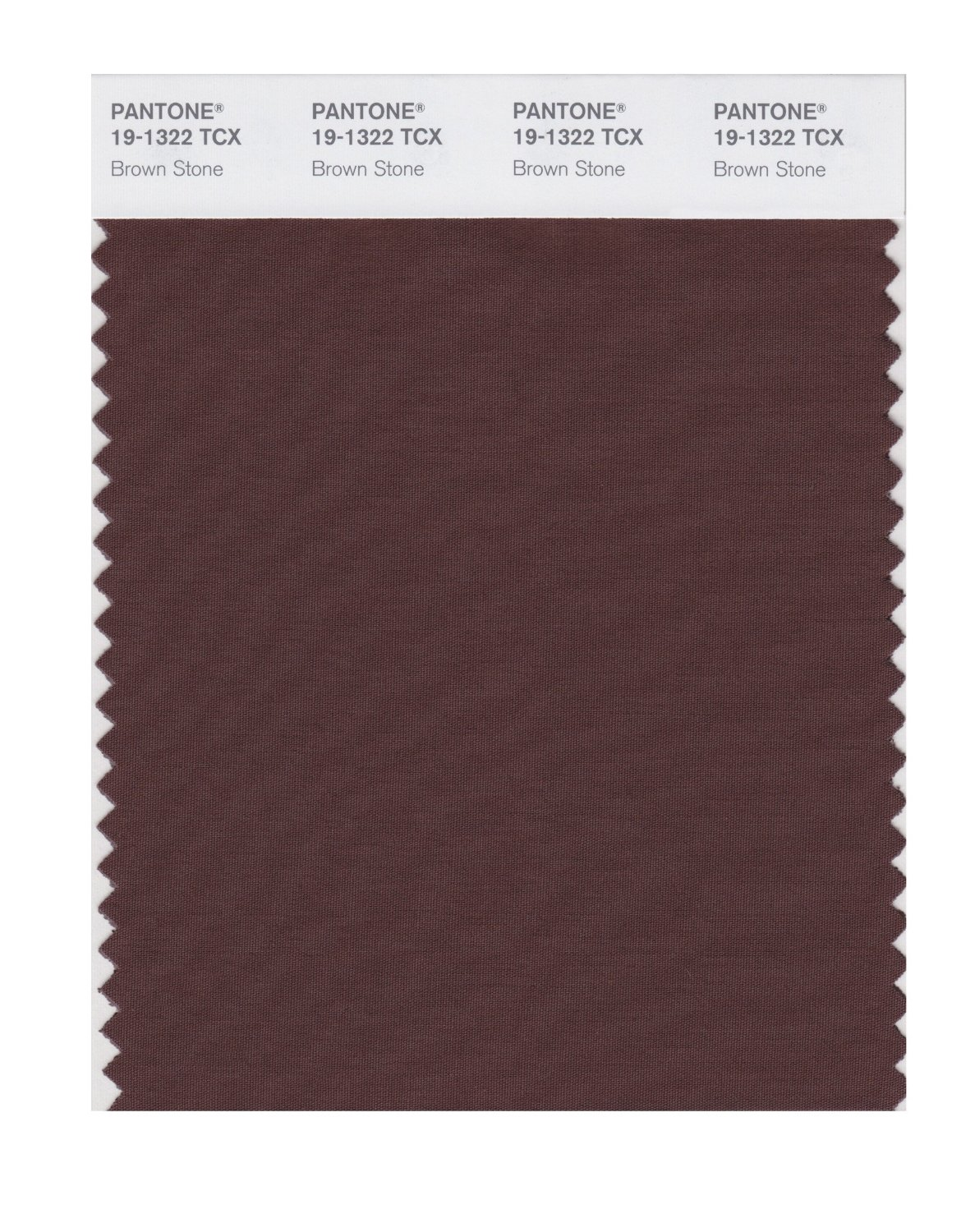 Pantone Smart Swatch 19-1322 Brown Stone