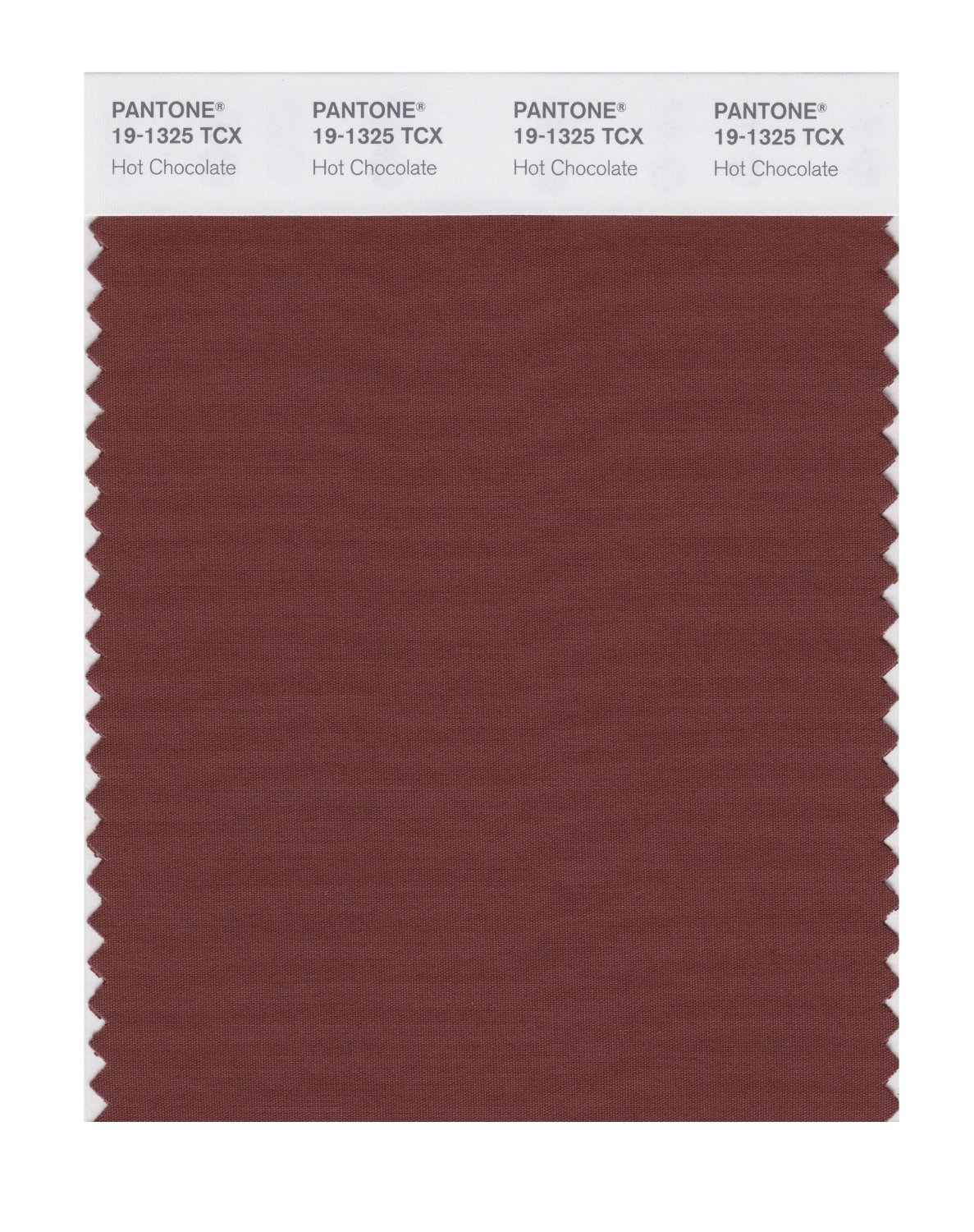 Pantone Smart Swatch 19-1325 Hot Chocolate
