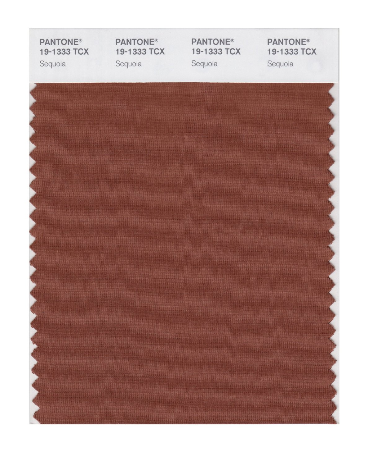 Pantone Smart Swatch 19-1333 Sequoia