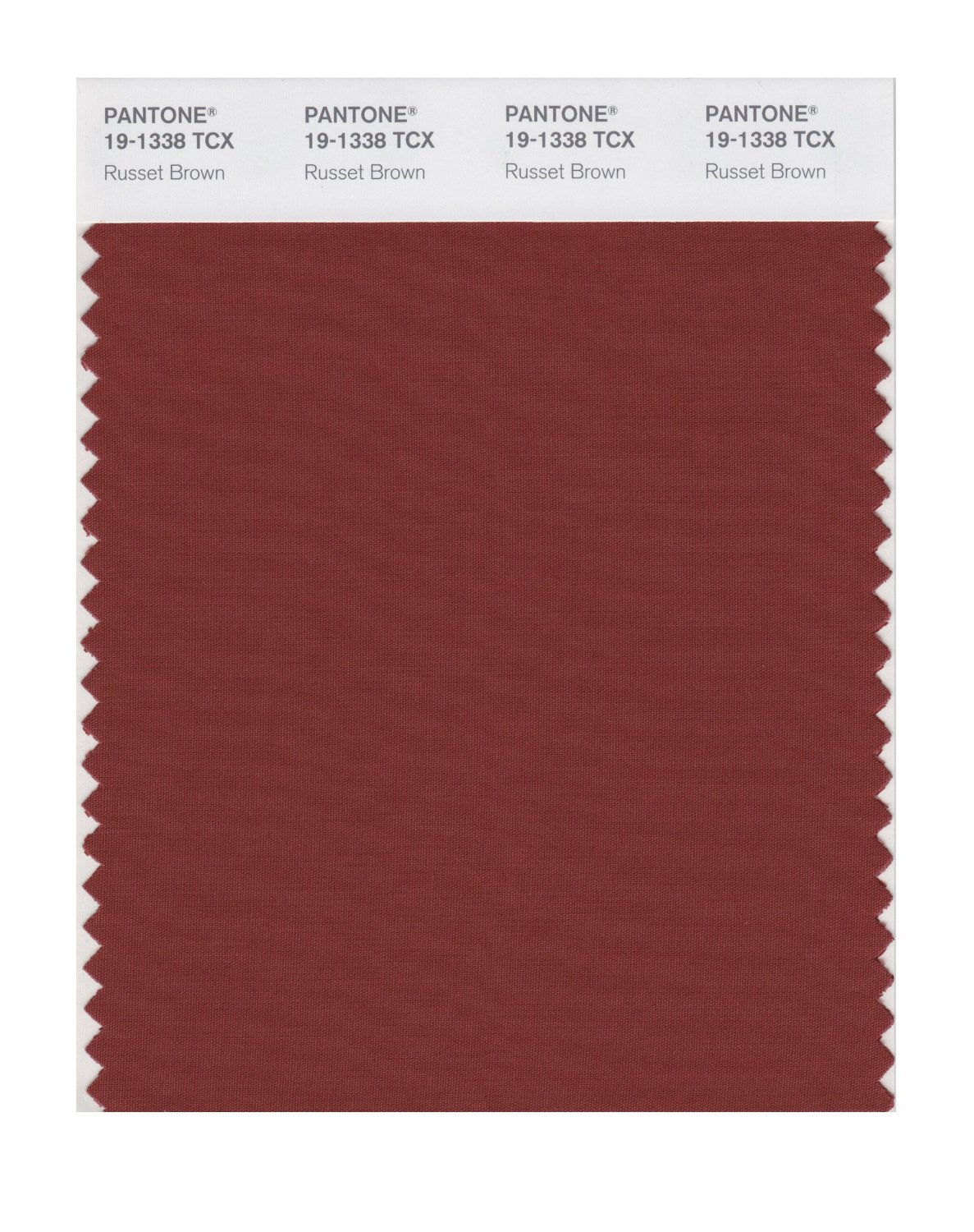 Pantone Smart Swatch 19-1338 Russet Brown