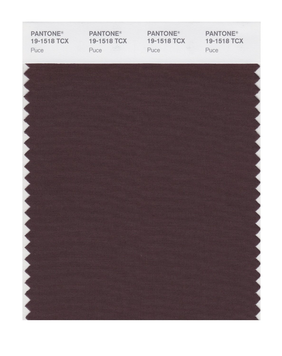 Pantone Smart Swatch 19-1518 Puce